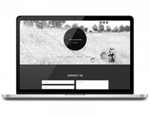 Blaze creative studio website design, development by UJUDEBUG