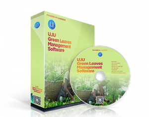 UJU Green Leaves Management Software – UJUDEBUG | Complete Tea Garden, Green Leaves, Tea GST Management Software in Tezpur, Guwahati, Assam India