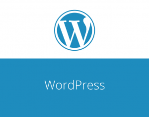 How to Update Your WordPress Website