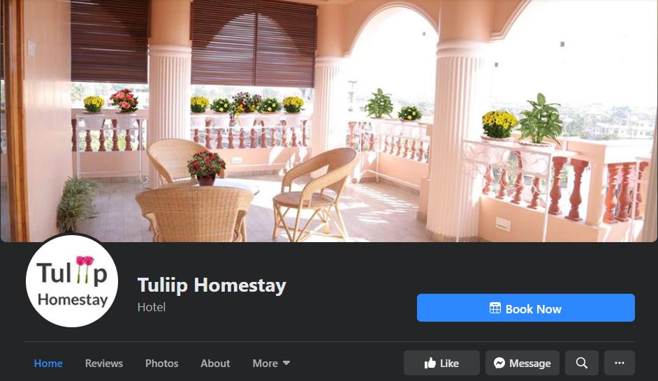 tuliip socail media marketing campaign