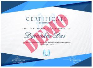 ujudebug internship certificate