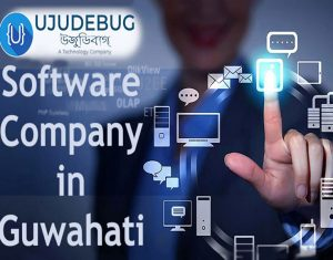 Software company in Guwahati
